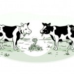 Cartoon illustrating cows grazing on a limited resource